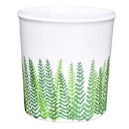 Evergreen Mugg 30 cl