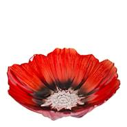 Poppy Skål 25 cm