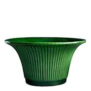 Daisy Kruka 25 cm Grön